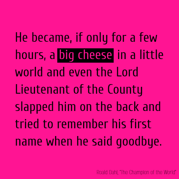 He became, if only for a few hours, a **big cheese** in a little world and even the Lord Lieutenant of the County slapped him on the back and tried to remember his first name when he said goodbye.